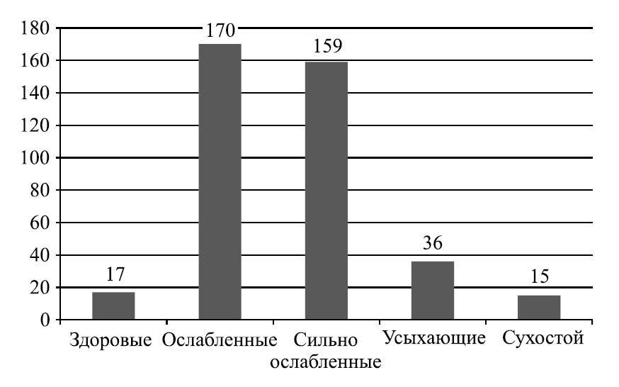 Фитосанитарное состояние лесообразующей породы Ulmus pumila на территории СЗЗ металлургического комбината