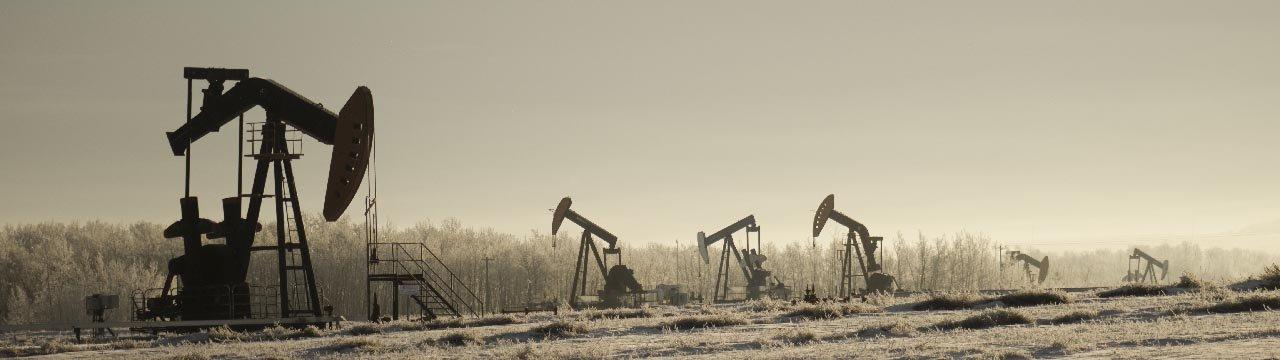 Гаагский суд обязал нефтяного гиганта вдвое сократить выбросы углерода